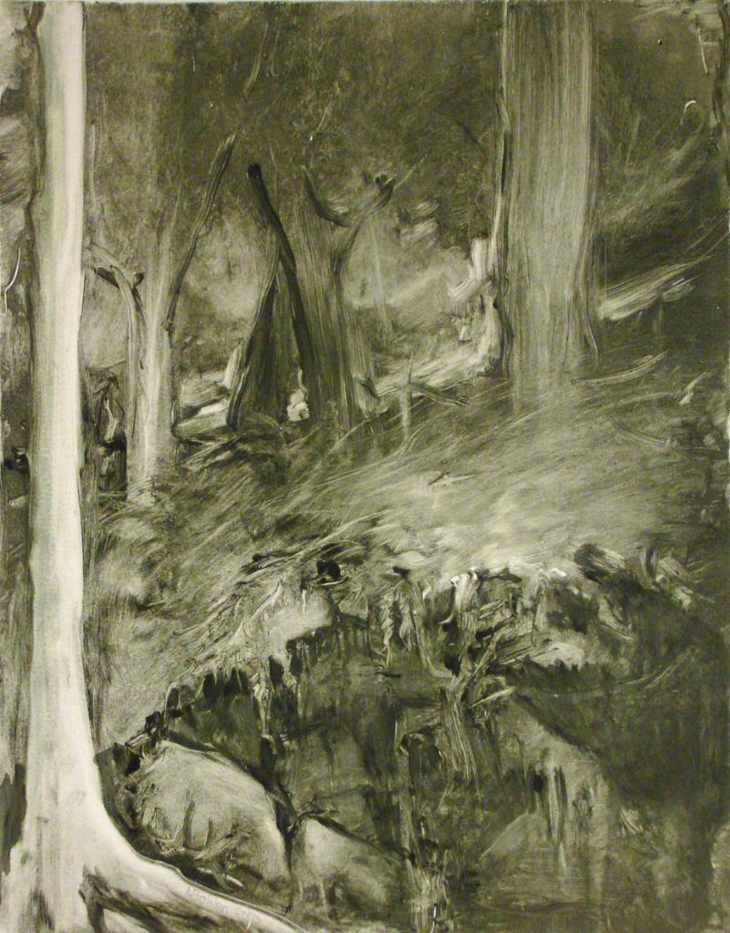 My Woods #1 (2010)