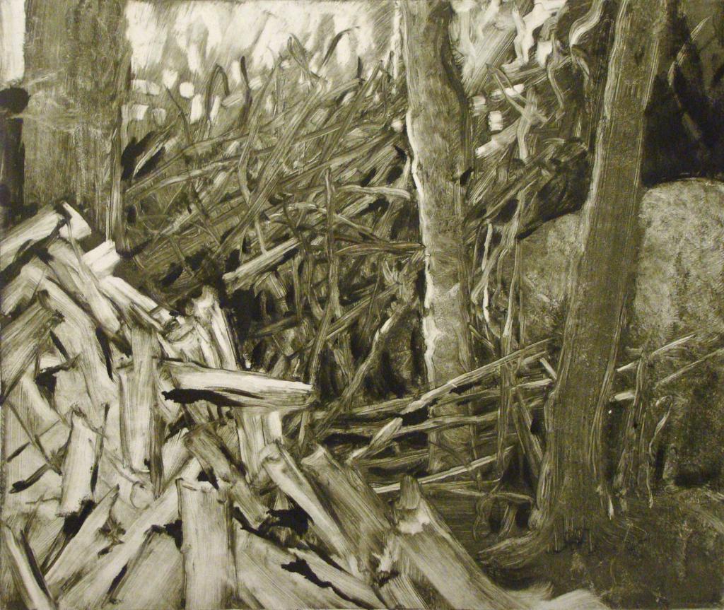 Woodpile, Lubec (2003)