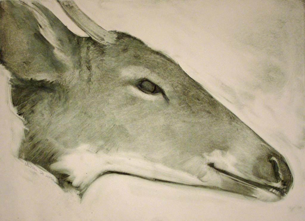 Deer Head (2004)