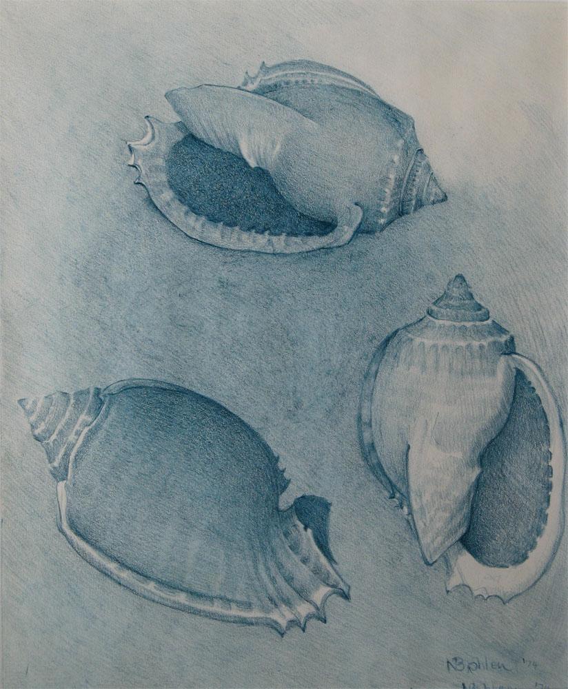 Shells (1974)