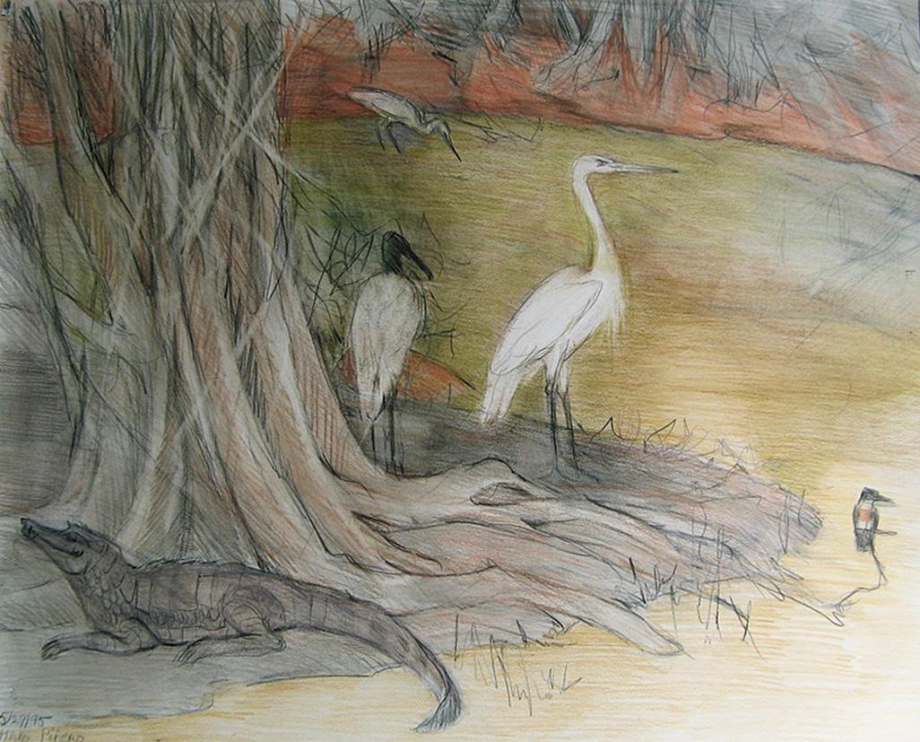 Marsh, Hato Pinero #1  (1995)